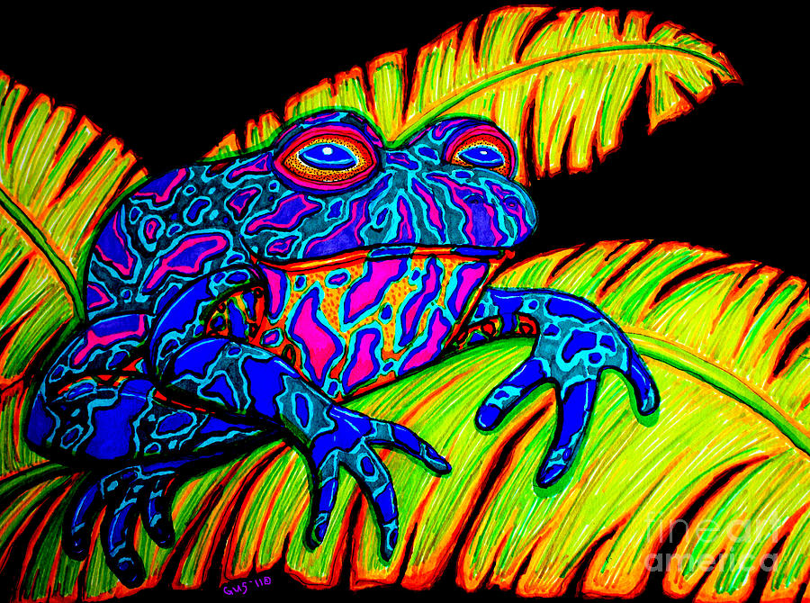 Tropical Frog Drawing  - Tropical Frog Fine Art Print