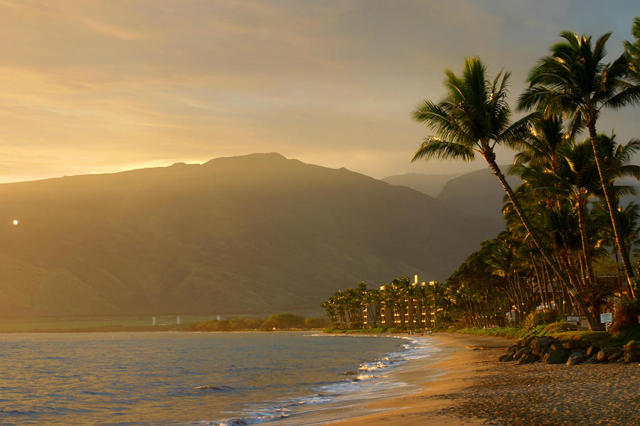 http://images.fineartamerica.com/images-medium-large/tropical-hawaiian-paradise-pierre-leclerc.jpg