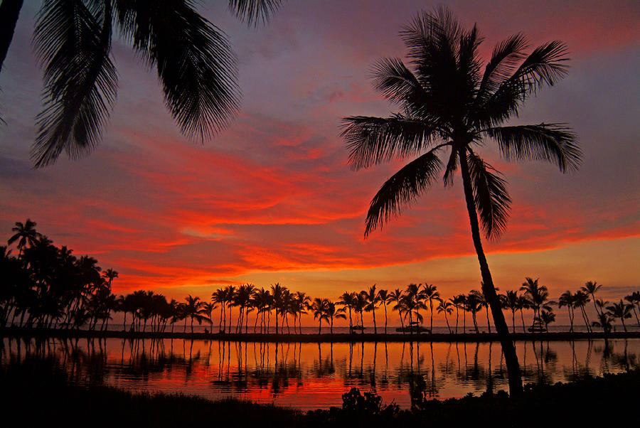Tropical Sunset Reflections Photograph