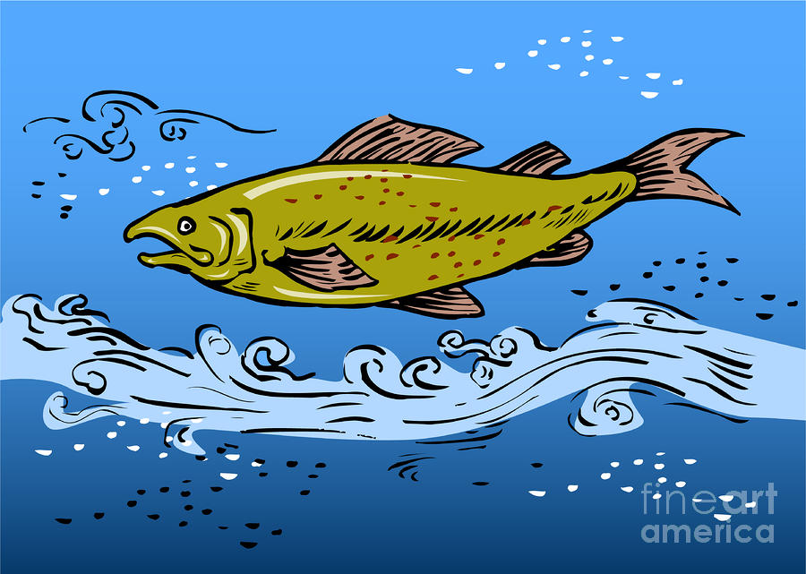 Trout Fish Swimming Underwater Digital Art  - Trout Fish Swimming Underwater Fine Art Print