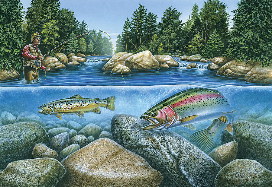 Trout View Painting  - Trout View Fine Art Print