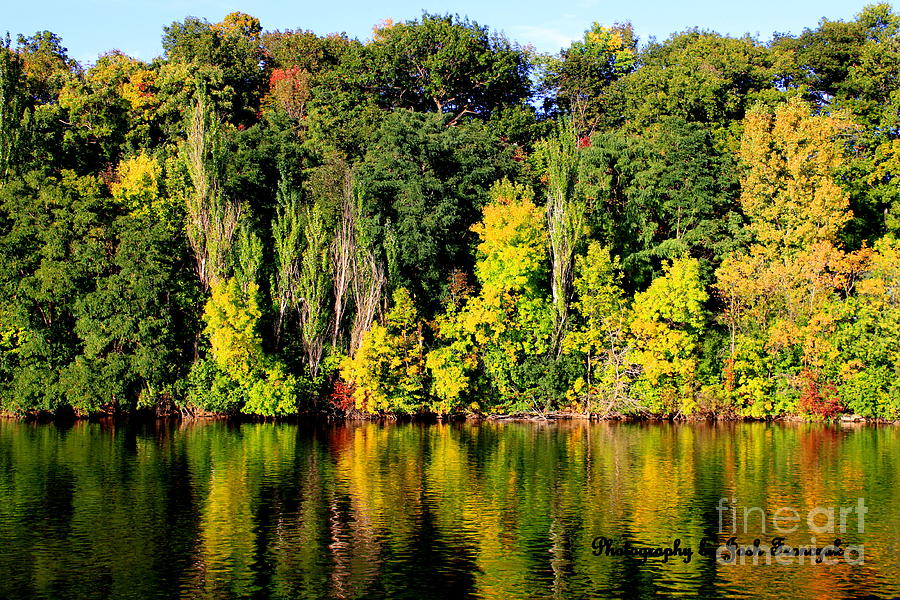 True Colors Of Fall Photograph  - True Colors Of Fall Fine Art Print