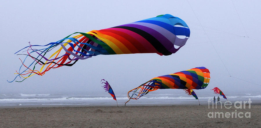 Tube Kites Photograph  - Tube Kites Fine Art Print