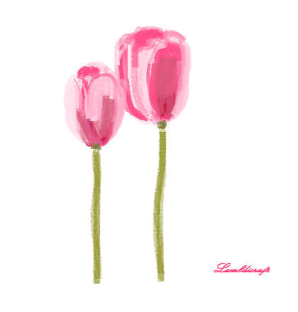Tulip Drawing - Tulip by Watcharee Suebkhajorn