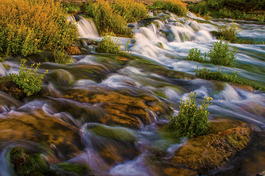 Rapids; Waterfall; Water; Fall; Park; State Park; Summer; Great Falls; Montana; Roar; Roaring; Rapids; Roaring Rapids; Moss; River; Rock; Shale; Bedrock; Sun; Sunlight; Sun Setting; Dusk; Colors; Green Photograph - Turbulant Bloom by Joshua Dwyer