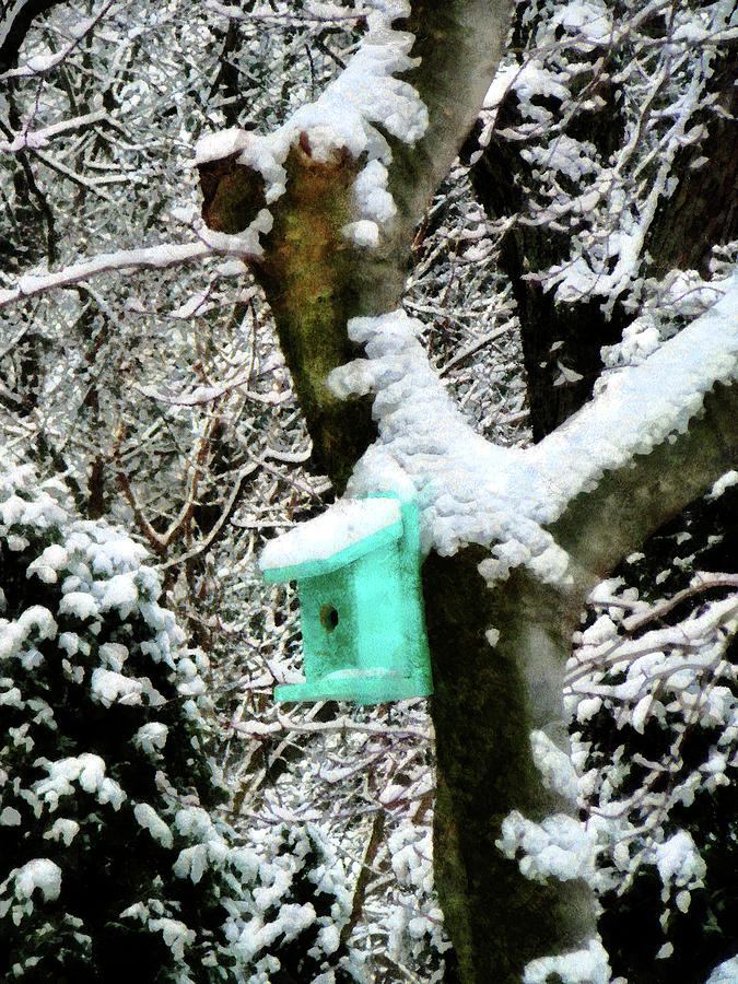 Turquoise Birdhouse In Winter Photograph
