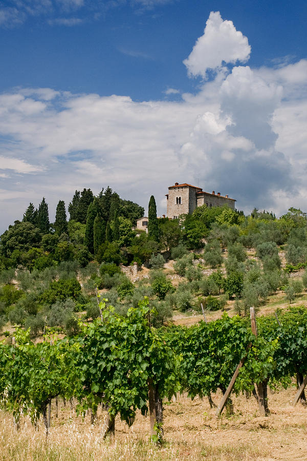 Agriculture Photograph - Tuscany Villa In Tuscany Italy by Ulrich Schade