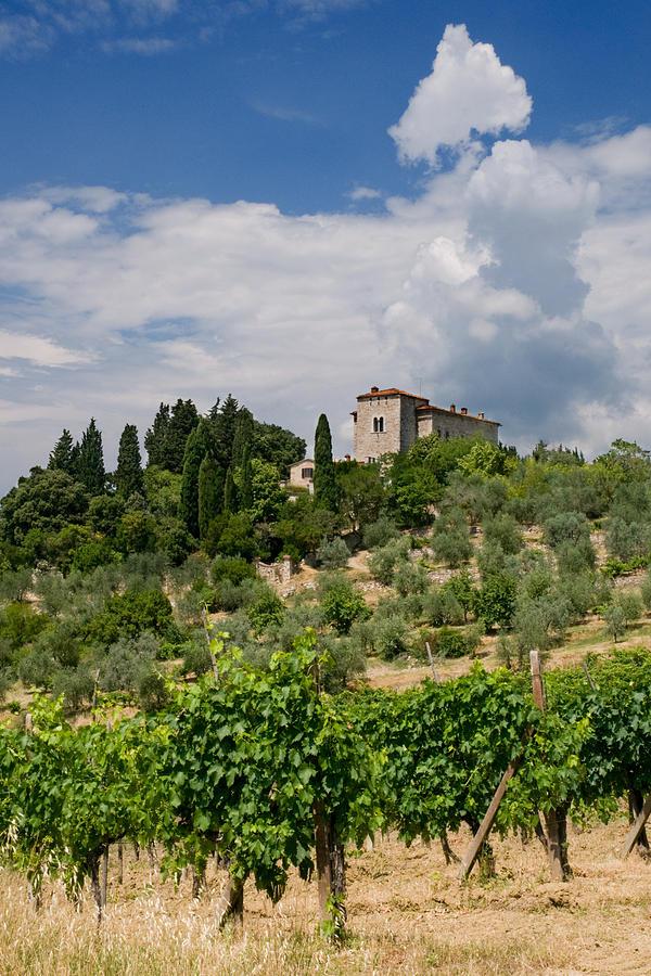 Tuscany Villa In Tuscany Italy Photograph