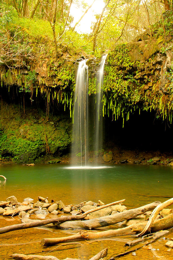 Twin Falls Maui Hawaii Photograph