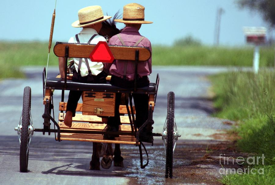 Two Little Amish Boys In A Buggy Photograph