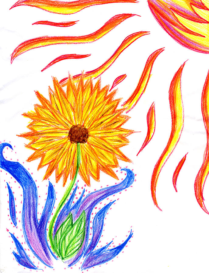 Sunflower Drawing - Two Suns by Tessa Hunt-Woodland