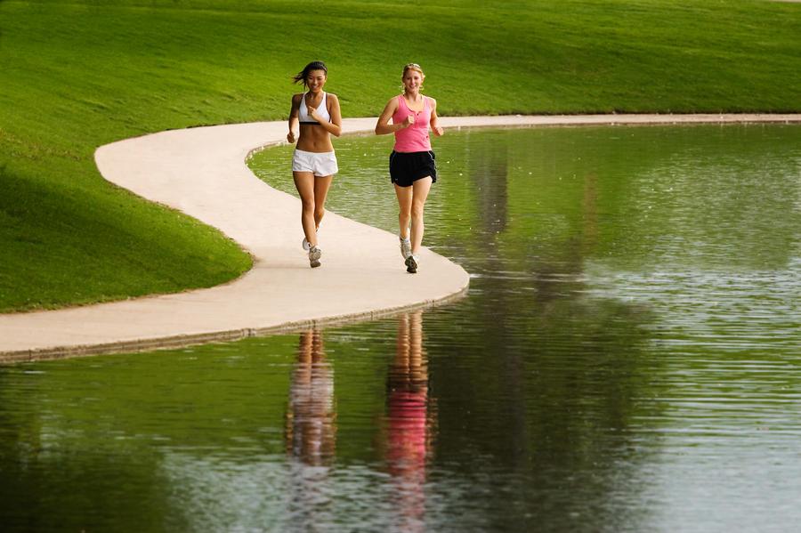 убрать жир со спины упражнения