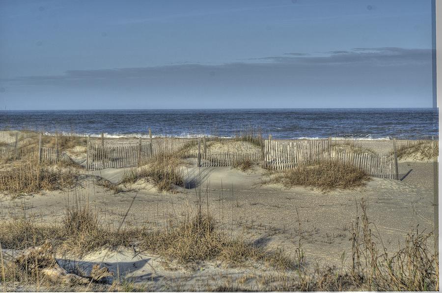 Photograph - Tybee Dunes by Howard  Hackney