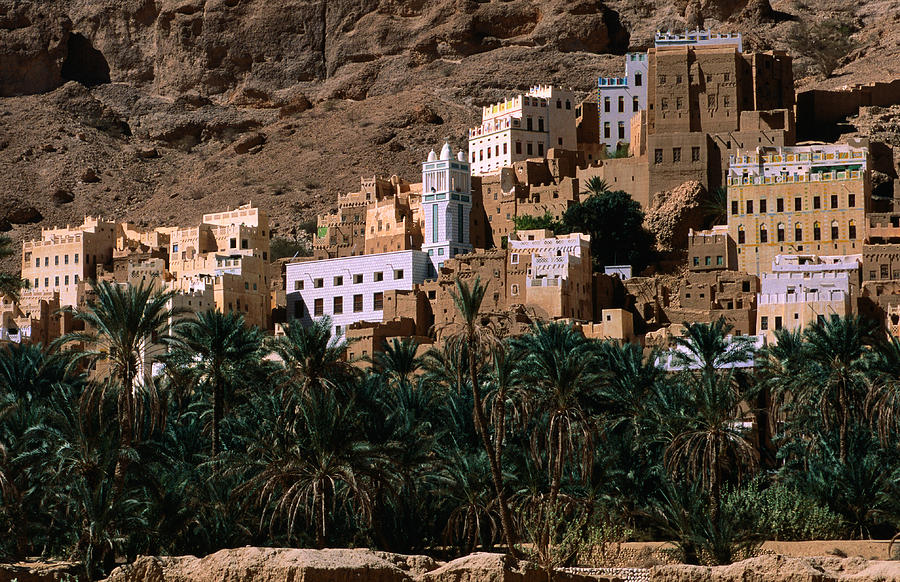 Typical Hadramawt Village With Date Plantation In Foreground, Wadi Dawan, Yemen Photograph  - Typical Hadramawt Village With Date Plantation In Foreground, Wadi Dawan, Yemen Fine Art Print