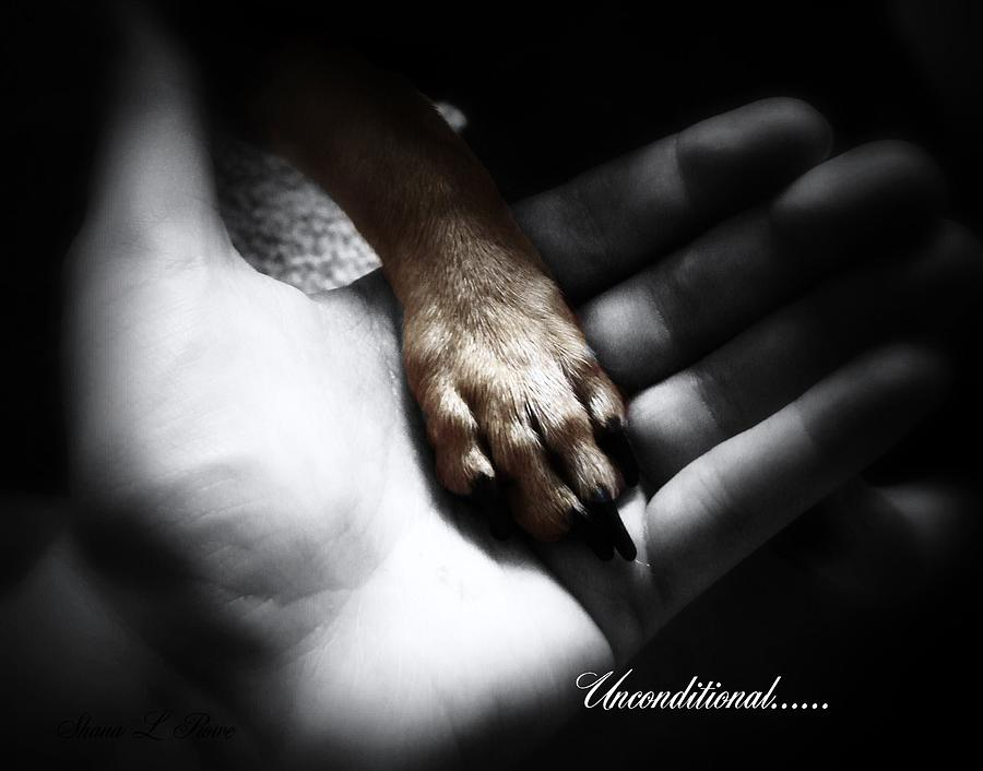 Unconditional Photograph  - Unconditional Fine Art Print