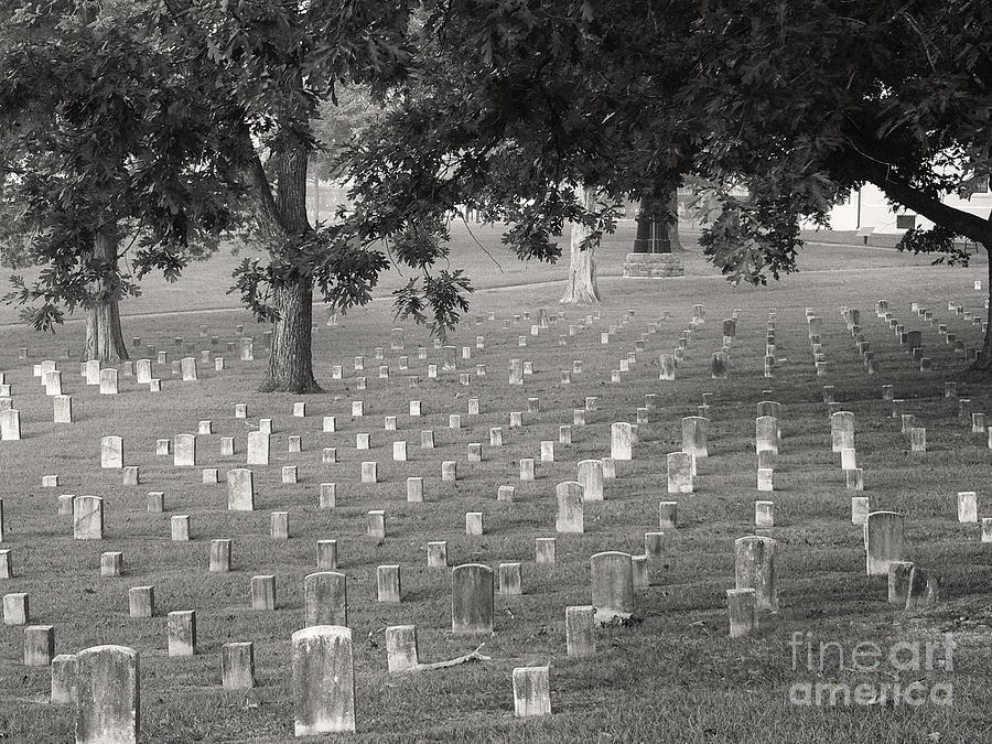 Us Civil War Photograph - Under Shiloh Oaks by David Bearden