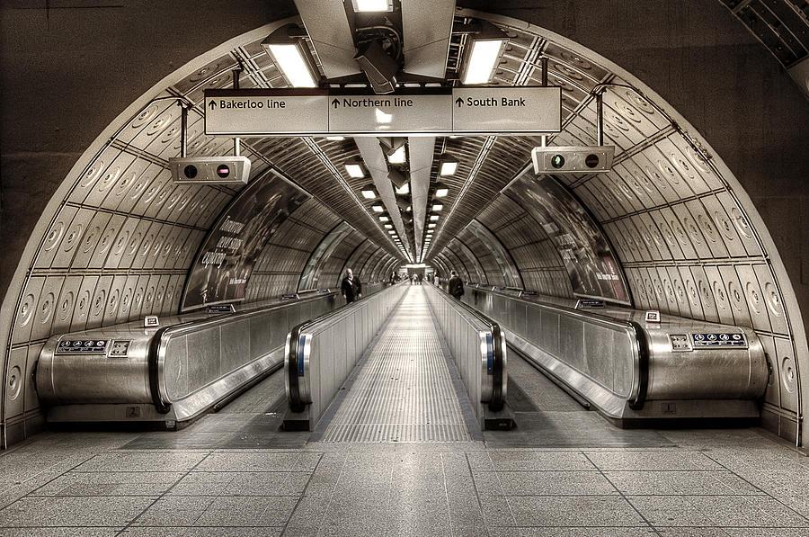 Underground Life 02 Photograph