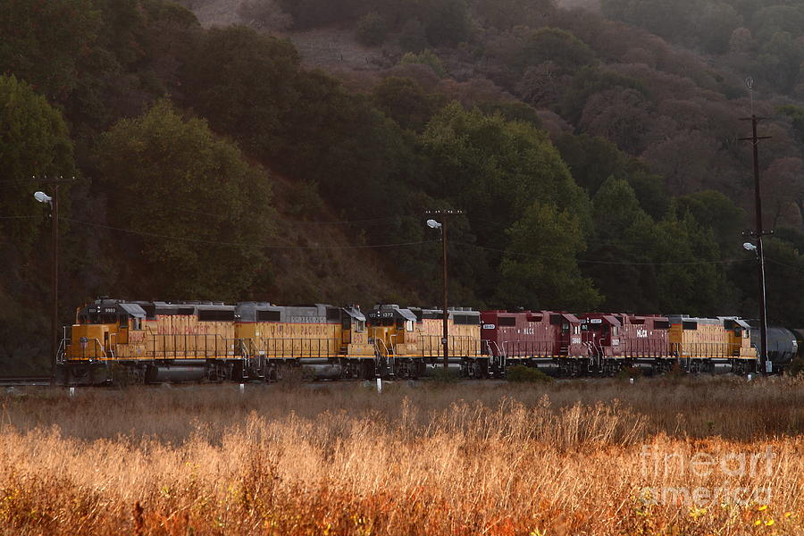 Union Pacific Locomotive Trains . 7d10551 Photograph