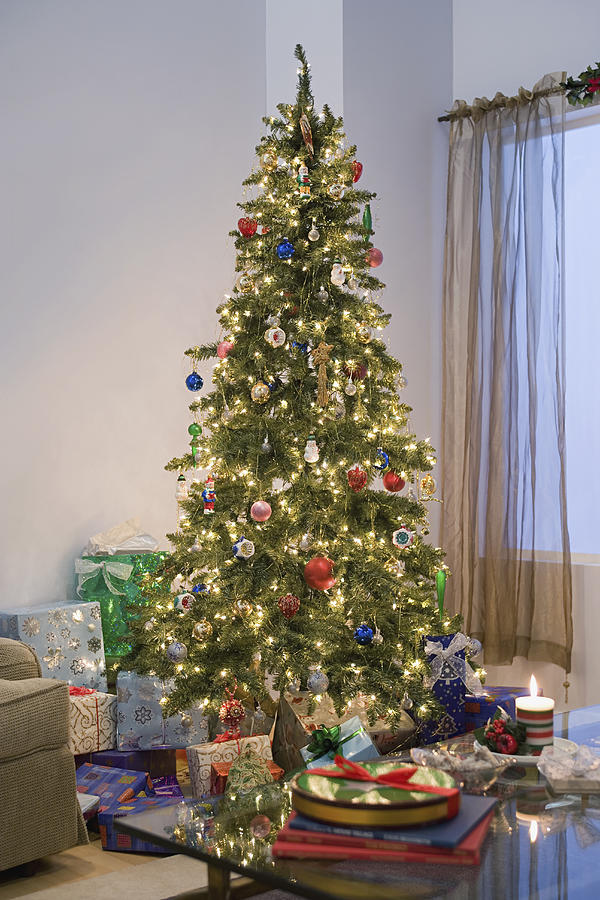 Usa California Los Angeles Christmas Tree In Living