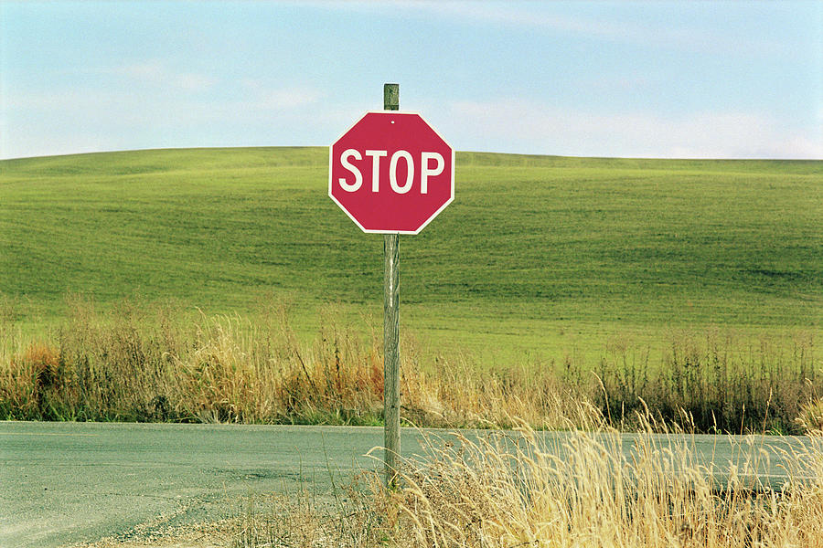 Horizontal Photograph - Usa, Washington, Palouse, Stop Sign On Country Road by Mel Curtis