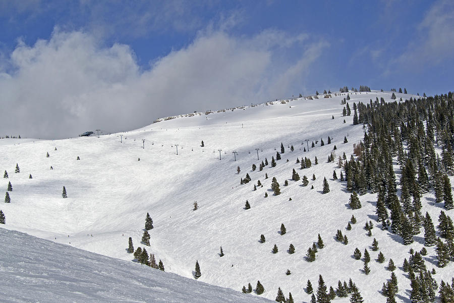 Vail Resort - Colorado - Blue Sky Basin Photograph