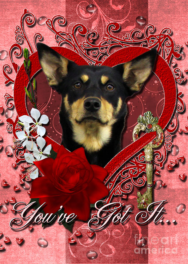 Valentines - Key To My Heart Australian Kelpie Digital Art  - Valentines - Key To My Heart Australian Kelpie Fine Art Print