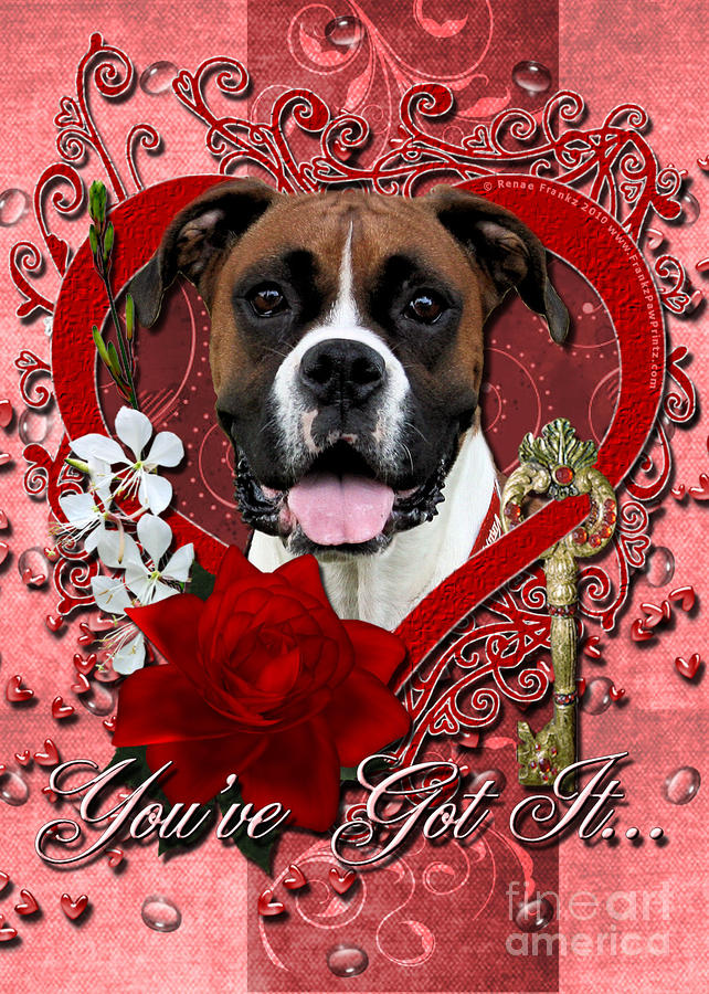 Valentines - Key To My Heart Boxer Digital Art