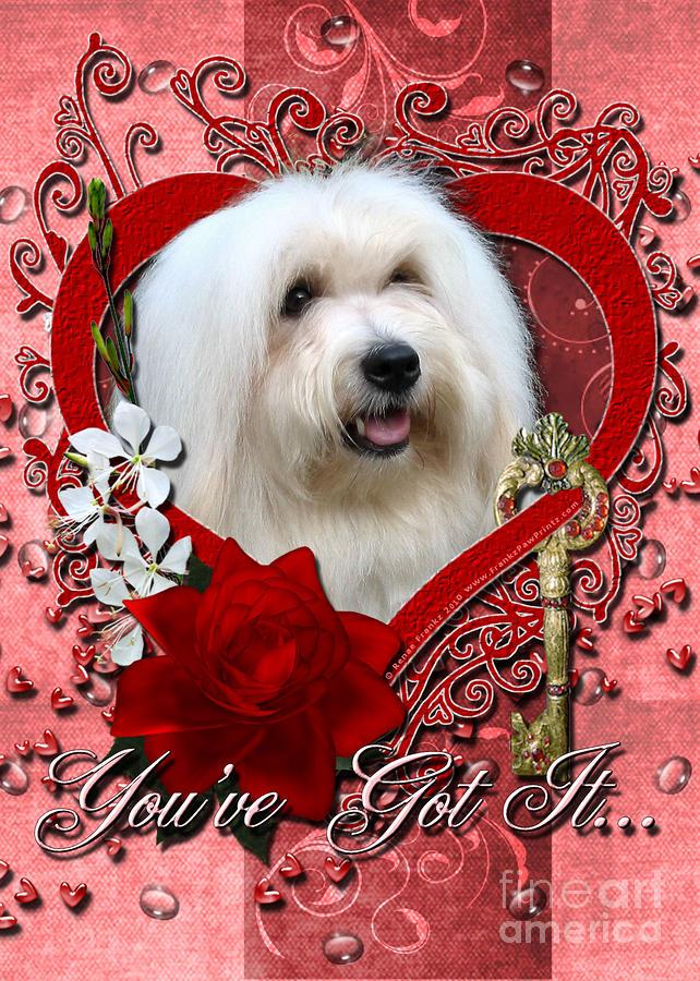Valentines - Key To My Heart Coton De Tulear Digital Art
