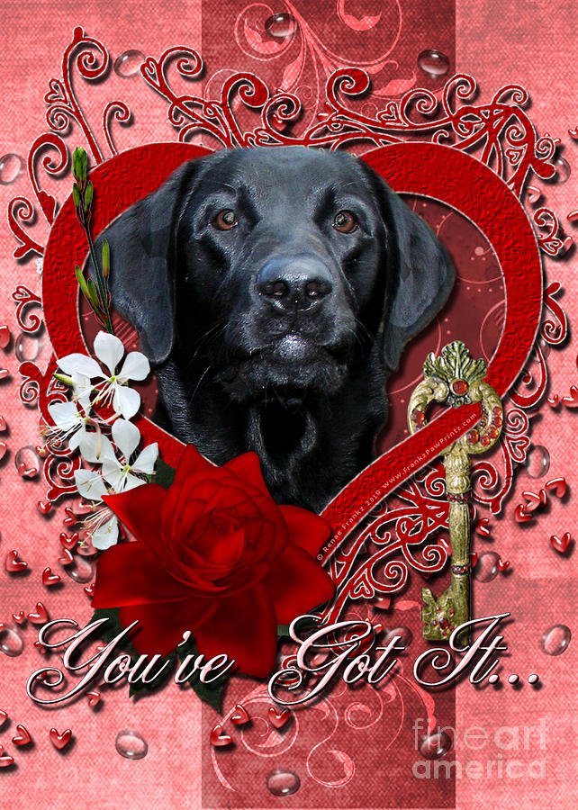Valentines - Key To My Heart Labrador Digital Art