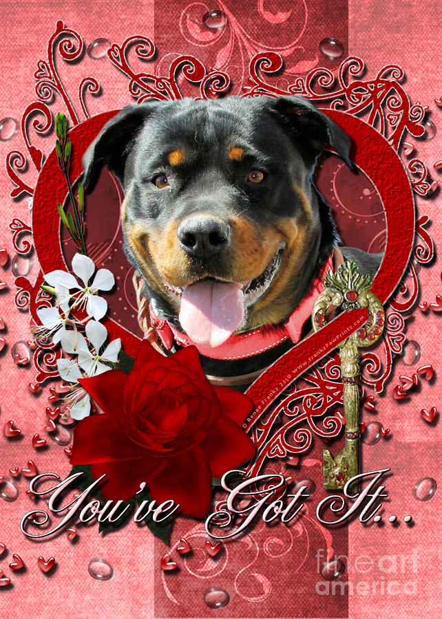 Valentines - Key To My Heart Rottweiler Digital Art  - Valentines - Key To My Heart Rottweiler Fine Art Print