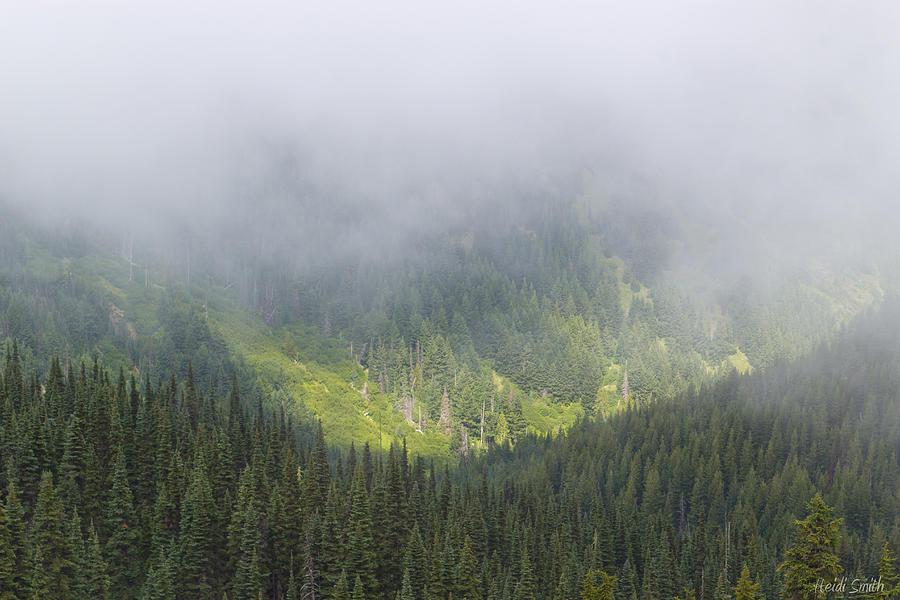 Valley Light Photograph