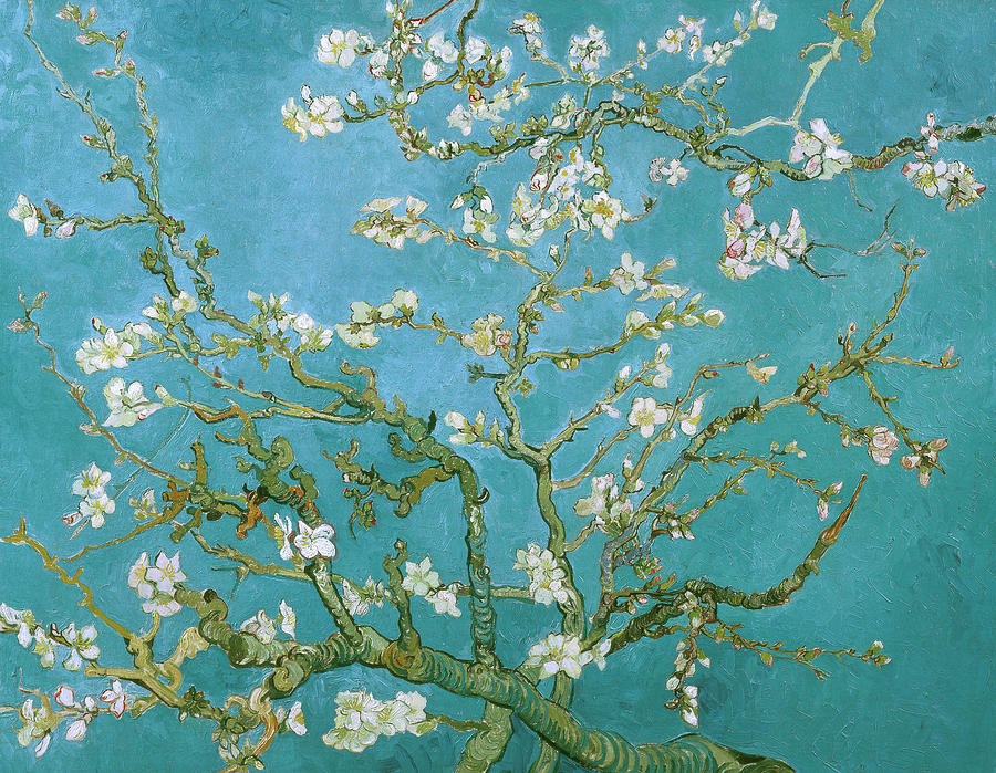 Van Gogh Blossoming Almond Tree Painting  - Van Gogh Blossoming Almond Tree Fine Art Print