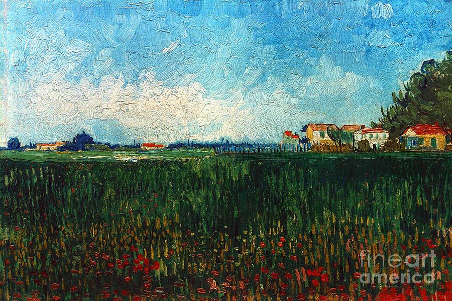 Van Gogh: Landscape, 1888 Photograph