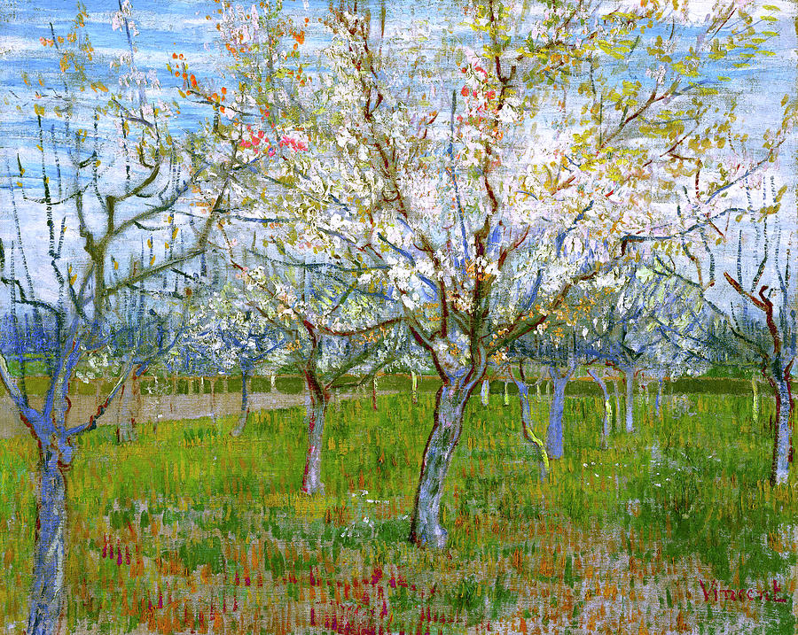 Van Gogh The Pink Orchard Painting  - Van Gogh The Pink Orchard Fine Art Print