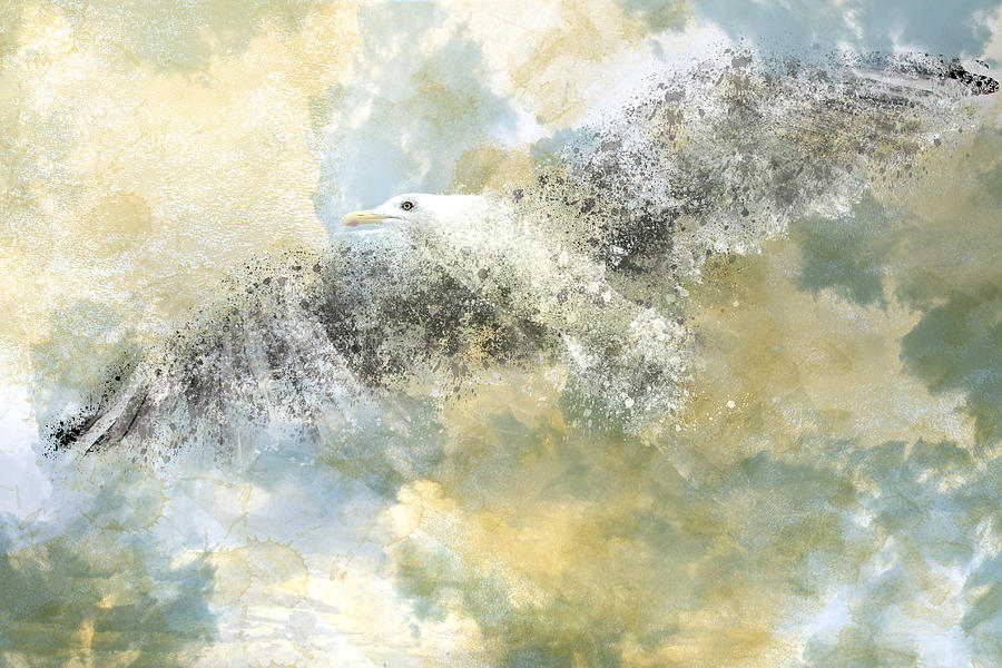 Vanishing Seagull Photograph  - Vanishing Seagull Fine Art Print