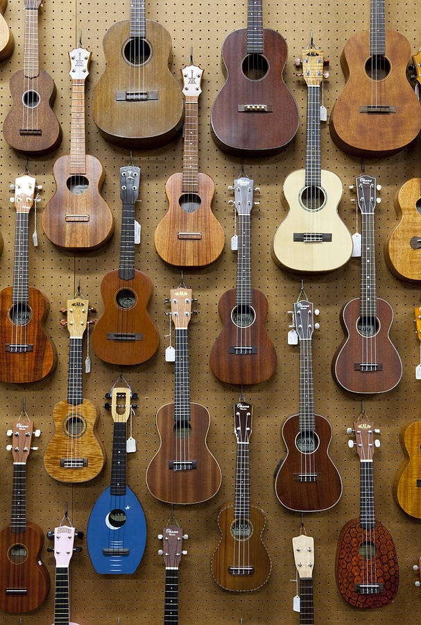 Various Guitars & Ukuleles Hanging From Wall Photograph