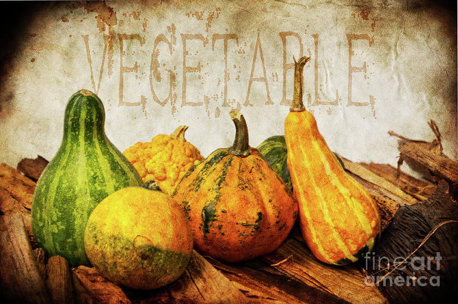 Vegetable II Photograph  - Vegetable II Fine Art Print