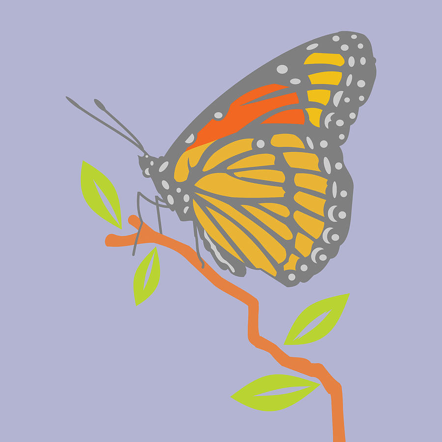 Viceroy Butterfly Digital Art  - Viceroy Butterfly Fine Art Print