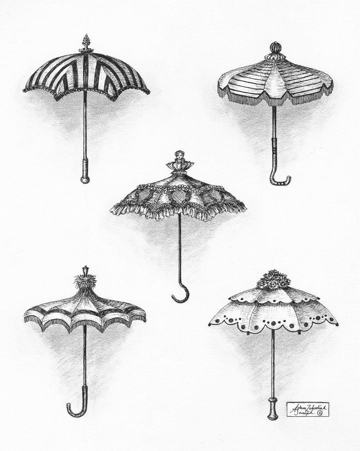 Victorian Parasols Drawing