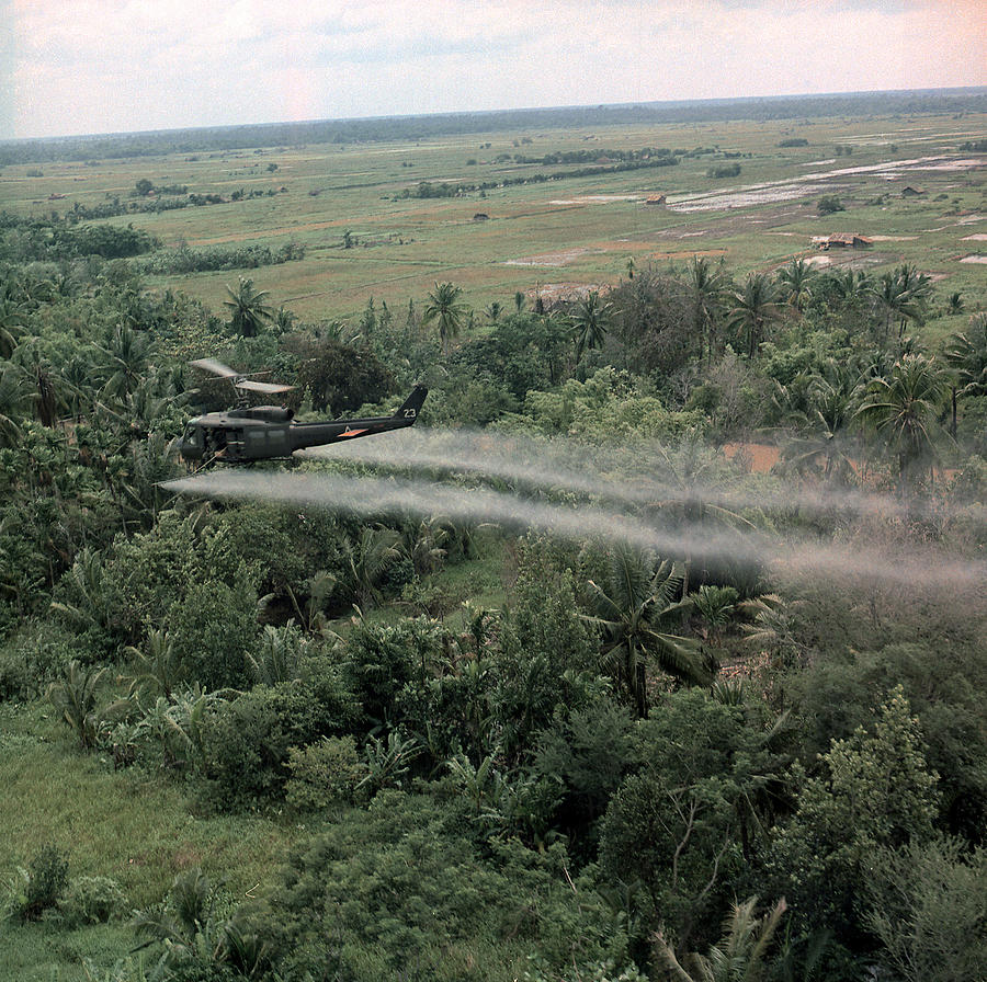 1960s Candids Photograph - Vietnam War, Defoliation Mission by Everett