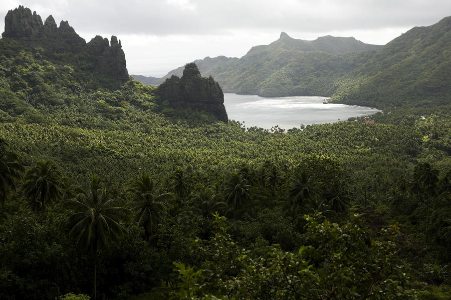 View Of Hatiheu Bay, Nuku Hiva Photograph  - View Of Hatiheu Bay, Nuku Hiva Fine Art Print