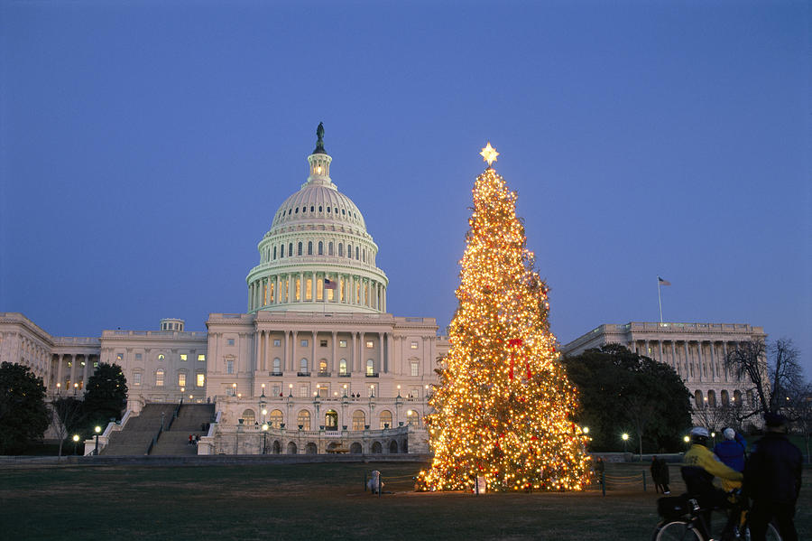 the Capitol Photograph - View Of The National Christmas Tree by Richard Nowitz