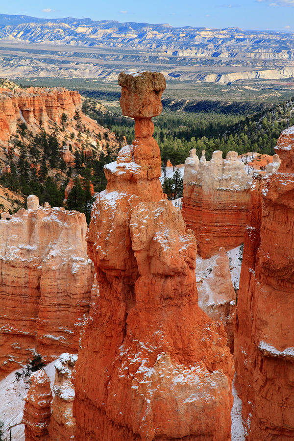 View Of Thors Hammer In Bryce Canyon Photograph  - View Of Thors Hammer In Bryce Canyon Fine Art Print