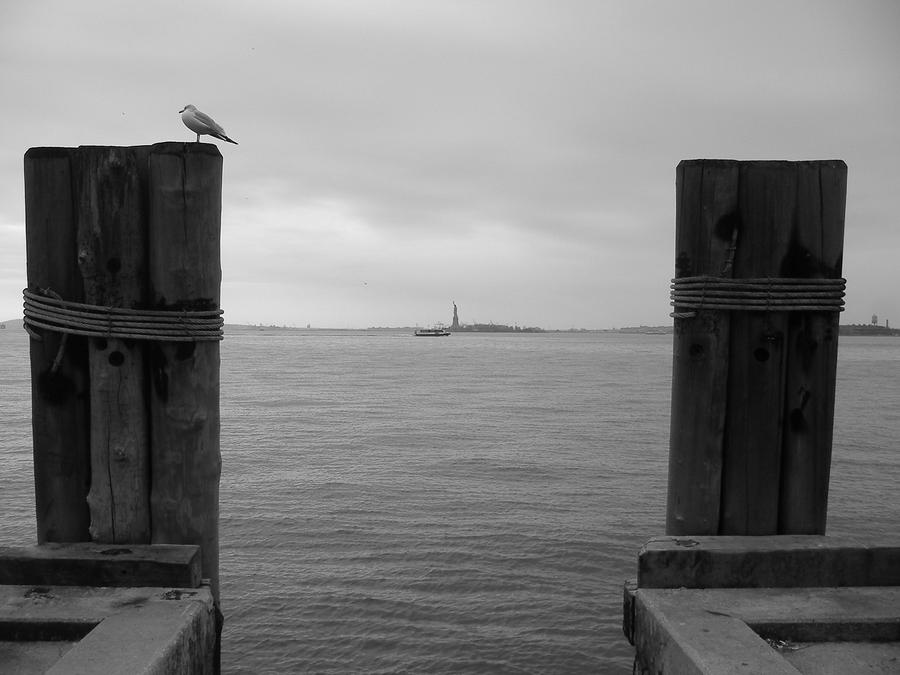 View Toward Statue Of Liberty In Nyc Photograph  - View Toward Statue Of Liberty In Nyc Fine Art Print
