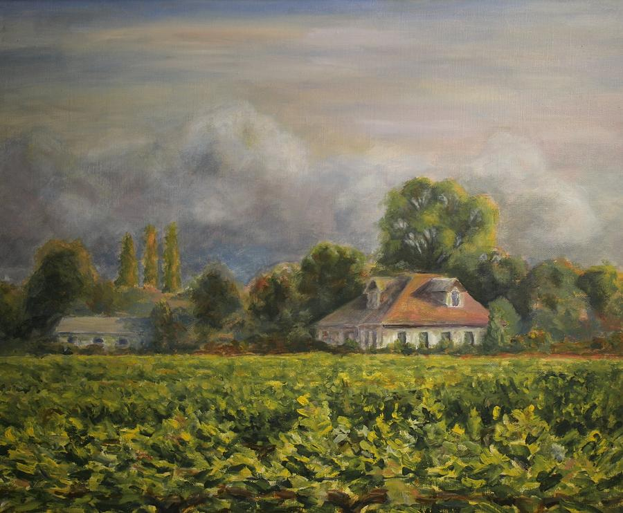 Vineyard Fog Santa Rosa Painting
