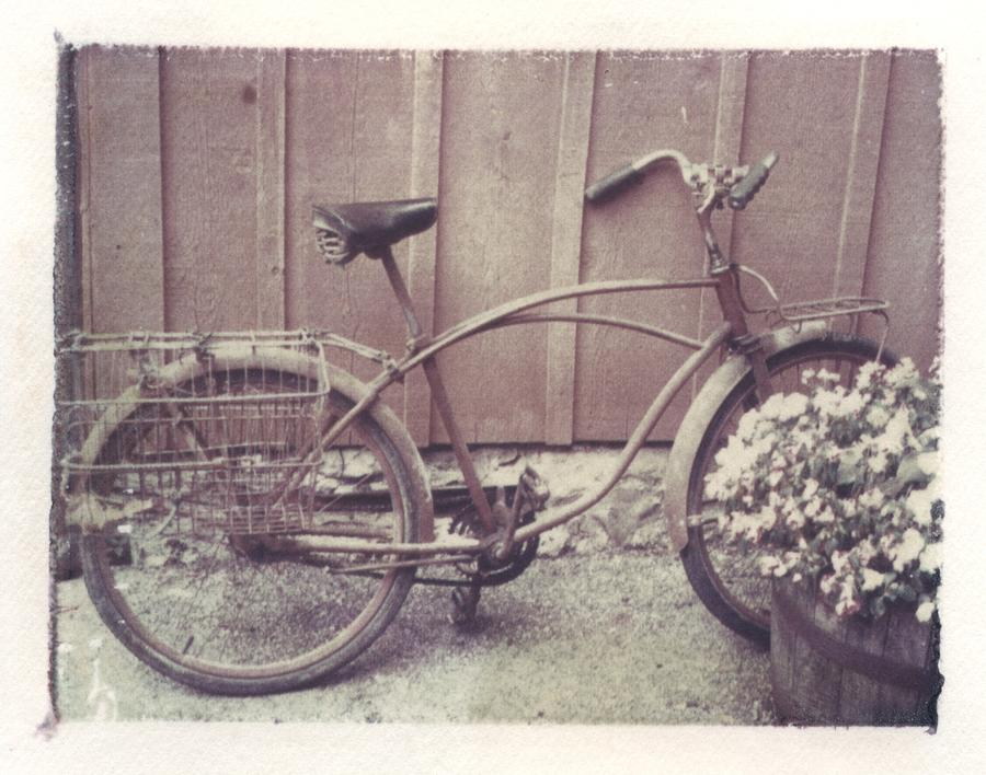 Vintage Bicycle Photograph