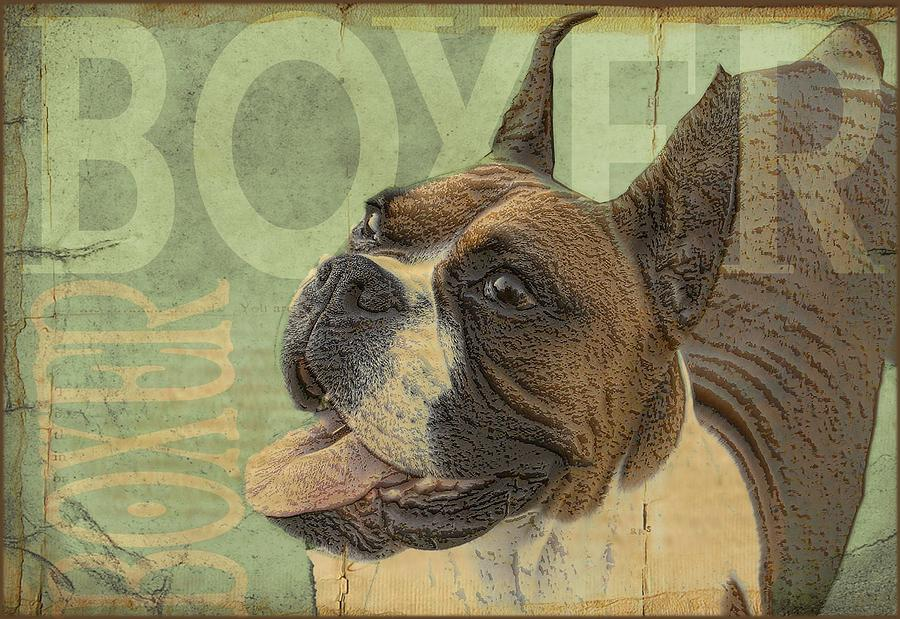Boxer Dog Digital Art - Vintage Boxer Dog by Wendy Presseisen
