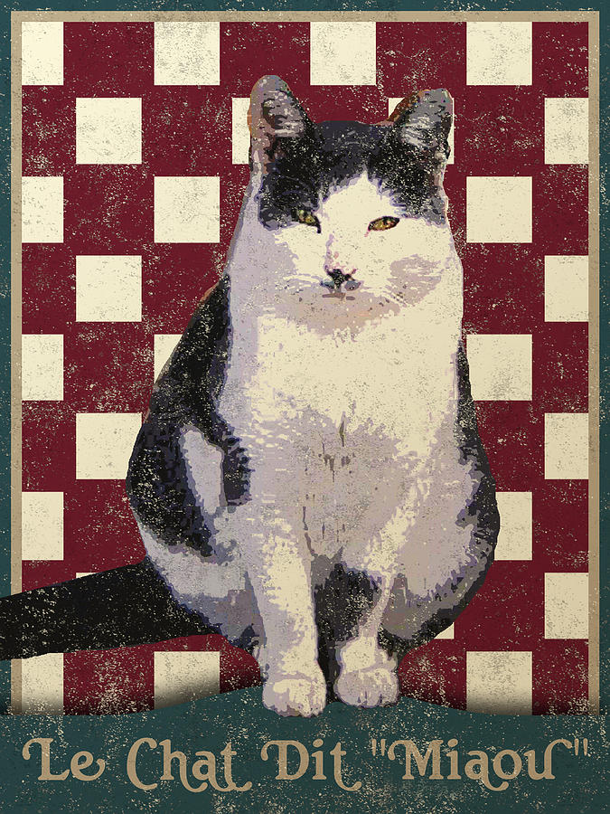 Vintage French Bistro Cat Digital Art  - Vintage French Bistro Cat Fine Art Print