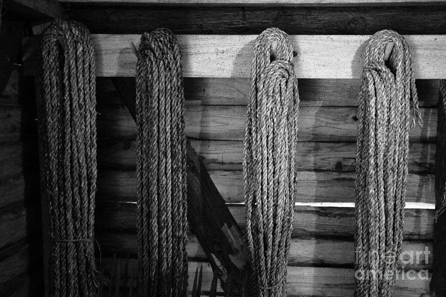 Vintage Ropes Photograph
