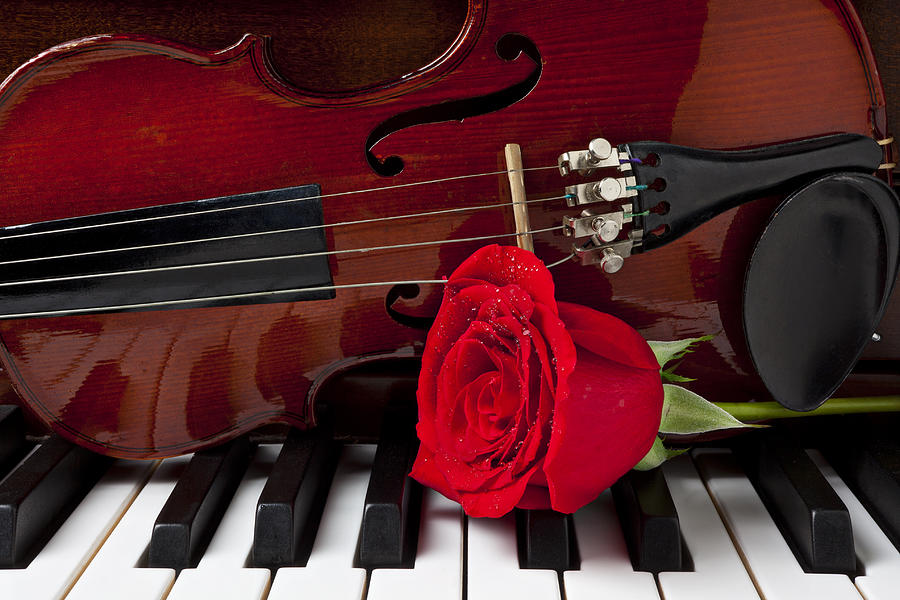 Violin And Rose On Piano Photograph